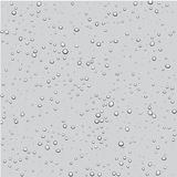 Background with bubbles. Gray background with bubbles. Vector water Royalty Free Stock Photography