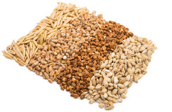 Background Buckwheat, Barley, Wheat, Oats Stock Images