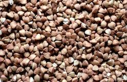 background buckwheat closeup Στοκ Εικόνες