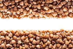 Buckwheat grain Stock Images
