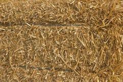 Background. Bulk of straw. Stock Photo