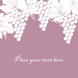 Background with bunch of grapes and place for your text Stock Image