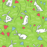 Background with bunnies Stock Photos