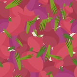 Background of Burgundy beets. Vector seamless pattern of vegetab Stock Images