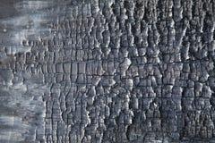 Background burnt wood royalty free stock image
