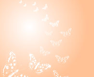 Background with butterflies Stock Photography