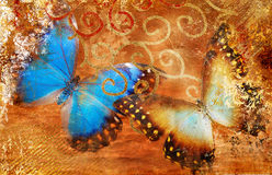 Background with butterflies Stock Photo