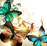 Background with butterflies and light Stock Image