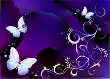 Background with butterfly. This picture have a background with butterfly Stock Photos