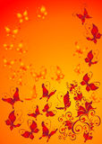 Background with butterfly and florel ornament Royalty Free Stock Photo
