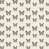 Background of butterfly patterns. It is a background image of lined and colored butterflies patterns Stock Photo