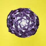 Background, Cabage, Cabbage Royalty Free Stock Photos