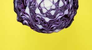 Background, Cabbage, Cc0 Stock Photo
