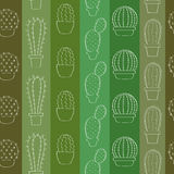 Background with cacti Royalty Free Stock Images