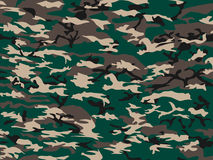 Background camouflage green Royalty Free Stock Image