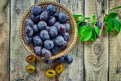 Basket with ripe juicy plums on table Stock Photo