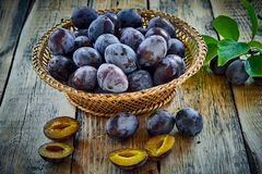 Basket with ripe juicy plums on table Stock Image