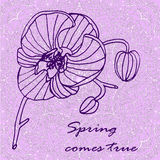 Background card contour drawing purple orchid, hand drawn  illustration Stock Photo