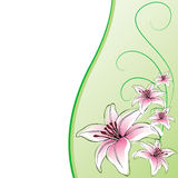 Background card, lily flowers. Background card lily flowers illustration design Stock Image