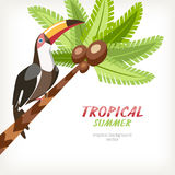 Background card with palm and toucan Stock Photos