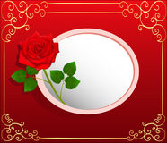 Background card with red rose and space for text Royalty Free Stock Photography
