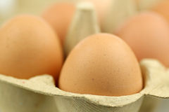 Background of a cardboard box with eggs Royalty Free Stock Image