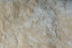 Background of a carpet woolly sheepskin royalty free stock image