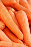 Background carrot. Shallow depth of field Royalty Free Stock Images
