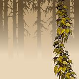 Cartoon brown woods with yellow ivy plant Stock Photography