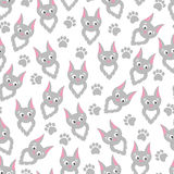 Background cartoon cats and paw prints. Stock Photography