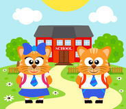Background with cat ,back to school Stock Images