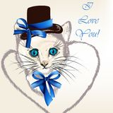 Background with cat in hat with bows and stylized heart Royalty Free Stock Photography