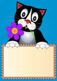 Background Cat With Flower Royalty Free Stock Photos