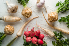 Background of celery roots, parsley, radishes with leaves and garlic on white table. Horizontal Royalty Free Stock Photo