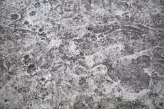 Background of cement screed with human dog tracks, abstract pattern. Design backgrounds texture stock photography