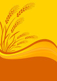 Background with cereal crop. Stylish vector illustration of background with cereal crop royalty free illustration