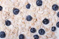 Background of cereal with milk and blueberries macro horizontal. Royalty Free Stock Photo
