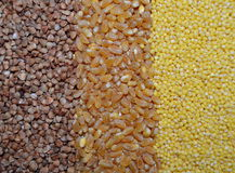 Background with cereals buckwheat, wheat, millet Stock Photography