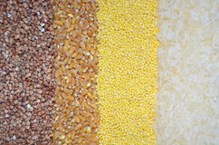 Background with cereals buckwheat, wheat, millet, rice Stock Photos