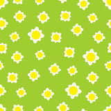 Background with chamomiles. Seamless pattern with chamomile flowers  light yellow background Royalty Free Stock Photo