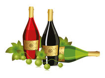 Background with champagne bottle and grapevine Stock Photography