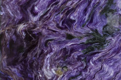 Background of charoite Royalty Free Stock Photography