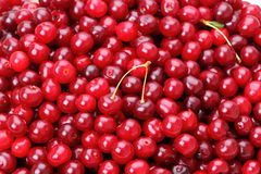 Background of Cherry Stock Photo