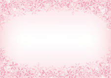 Background of cherry blossom Stock Photos