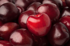 Background of a cherry Royalty Free Stock Photography