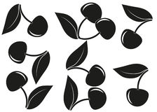 Background cherry. Cherry with leaves white and black color Royalty Free Stock Photo