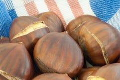 Background of chestnut Royalty Free Stock Image
