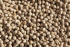 Background of chick peas Royalty Free Stock Photo