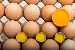 Background of chicken and quail eggs in a cardboard tray. Stock Images