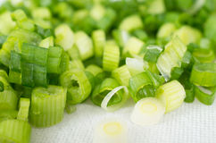 Background of chopped green shallots Stock Image